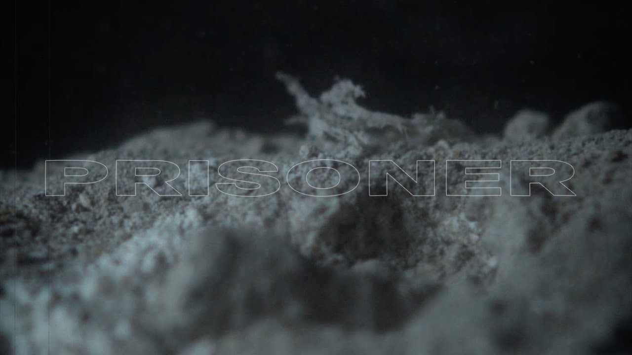 """WOLPACK - Video """"Prisoner"""" OUT NOW !"""