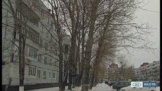 «Новости Тольятти» 04.12.2017