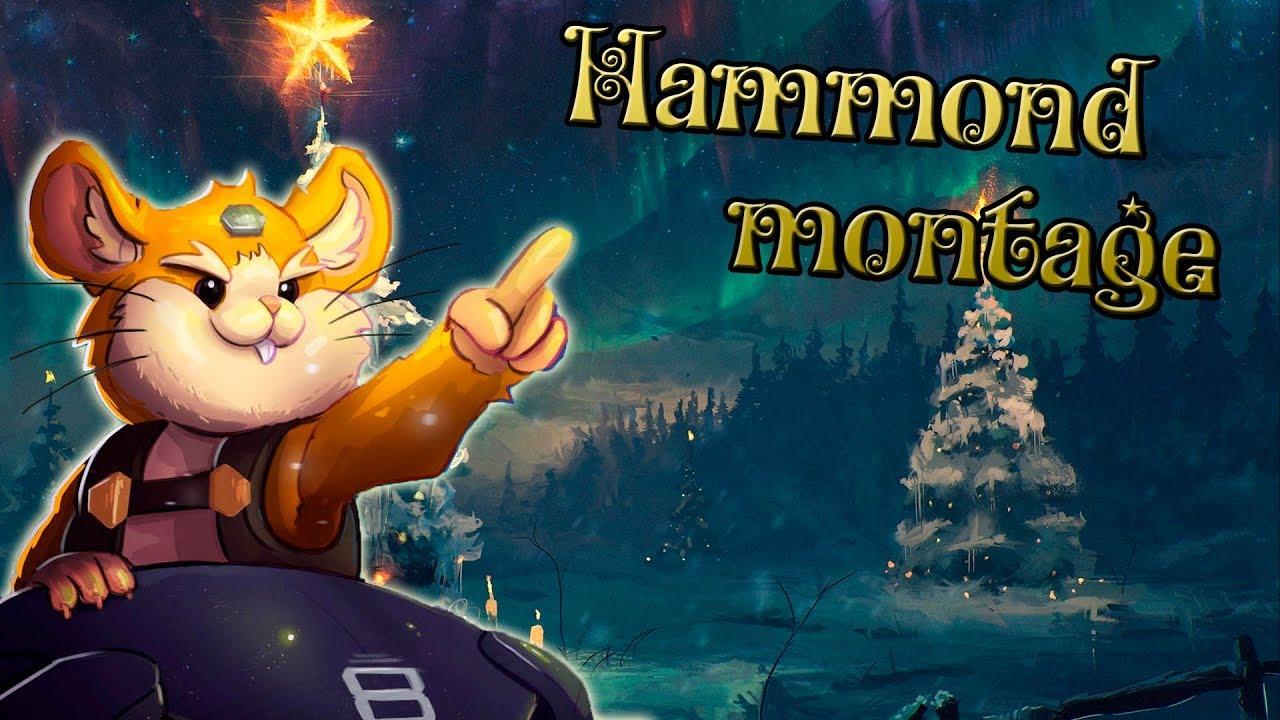 Hammie Boye (Overwatch Hammond Montage)