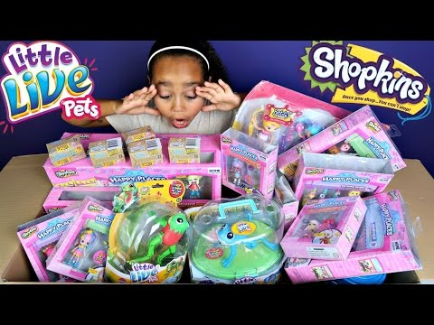 Giant Moose Toys Surprise Toy Box - Shopkins Season 6 - Happy Places - Little Live Pets