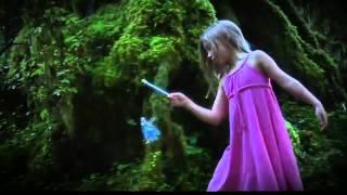 Летающие феи - подарите ребенку сказку!(Заказать можно тут: www.odnoklassniki.ru/ksenikaasbest Вы уже не верите в чудеса? А зря. Посмотрите видео и покажите своей..., 2013-10-05T18:09:01.000Z)