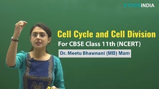 CBSE Video Lecture of Cell Cycle and Cell Division by  Dr  Meetu BhawnaniMB Mam