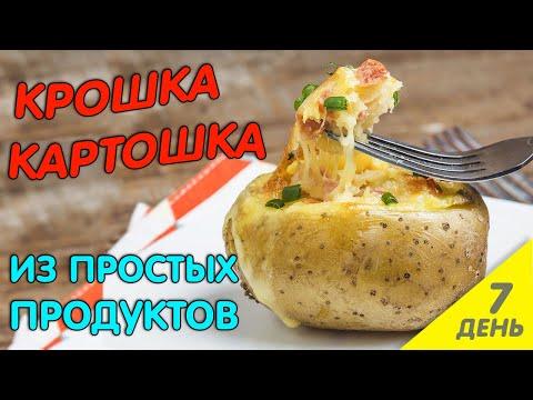 День 7 | Крошка картошка. ОТ ТАКОЙ КАРТОШКИ ЗА УШИ НЕ ОТТЯНЕШЬ!