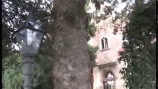Отдых в Италии, замок