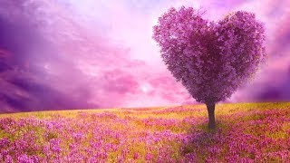 The Best Relaxing Piano Music. Beautiful Nature for Relaxation, Stress Relief, Sleep 🎵21