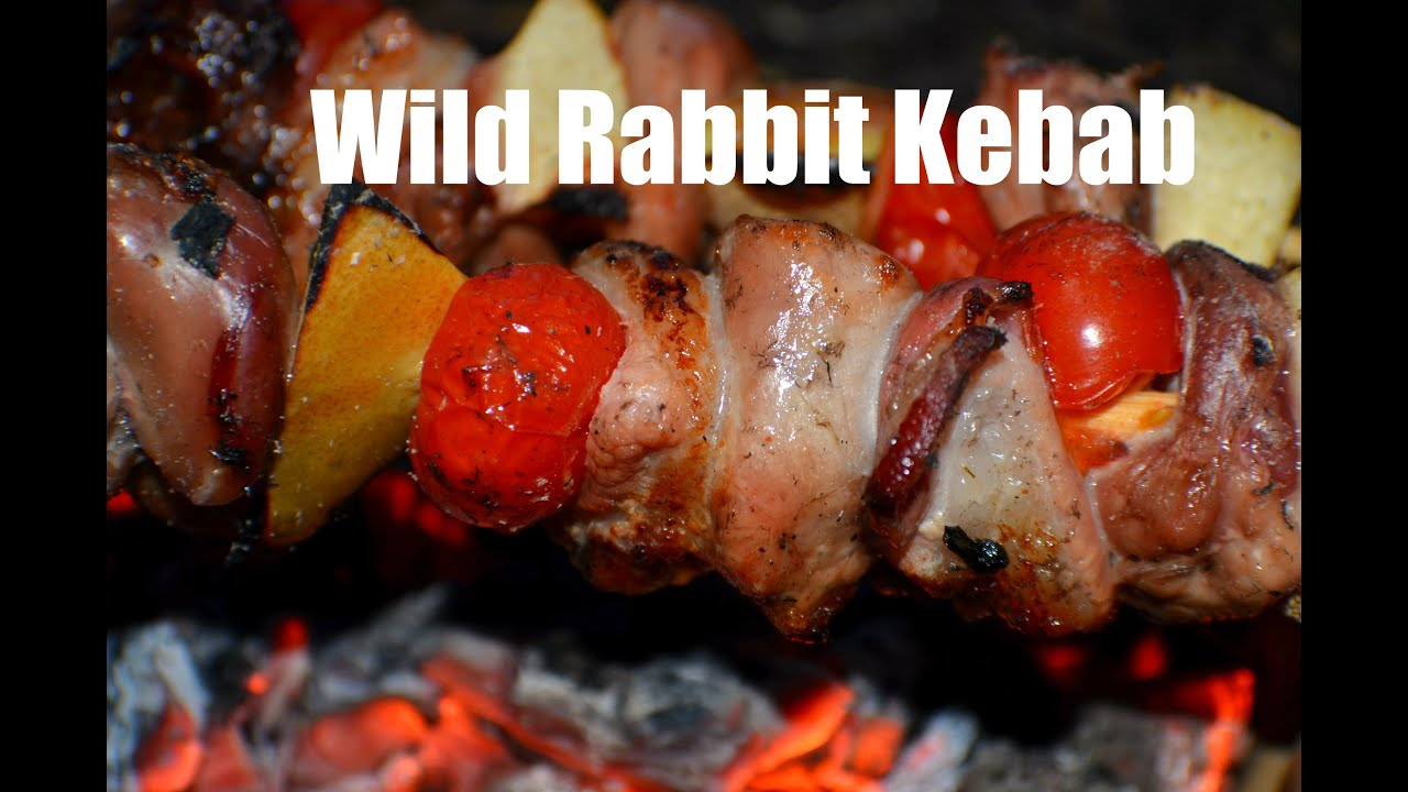 bushcraft rabbit kebab cooked over open fire youtube