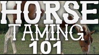 Horse Taming 101 - Minecraft 1.6