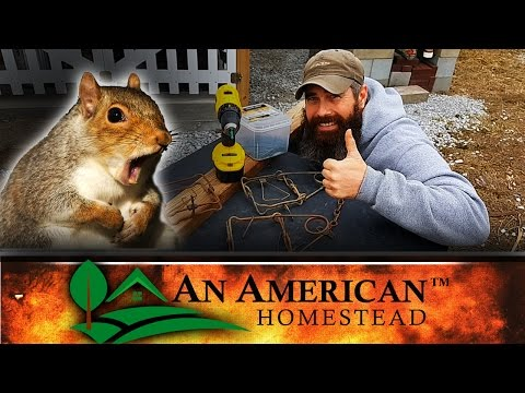 How To Kill A Bazillion Squirrels (Probably Illegal)