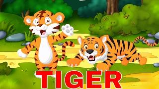 Thế giới động vật hoang dã | Bé học đọc các con hổ con bò rừng con lợn rừng | Dạy trẻ thông minh sớm