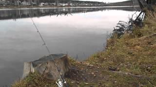 Риболовля на Фарфористе. Прокоп'євськ. Спінінг. Закриття сезону.