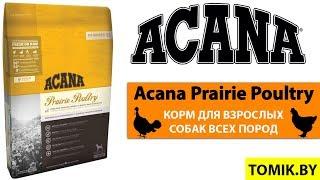 Сухой корм для собак Acana Prairie Poultry купить в Минске - Акана для взрослых собак всех пород