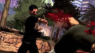 Sleeping Dogs - Dragon Master DLC