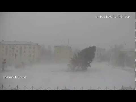 Метель - упала ель. Иркутская область. Черемхово (25.11.2018)