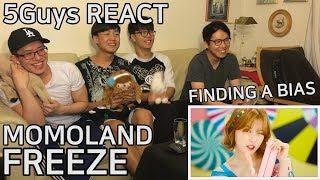 [NEW FANBOYS] MOMOLAND (모모랜드) - Freeze (꼼짝마) 5Guys MV REACT