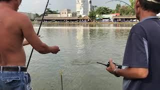 Nhung Pha Ben Cần Cá Tra đầy kích thích!