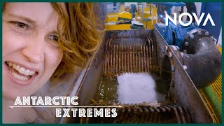Where Does the Poop in Antarctica Go? | Antarctic Extremes