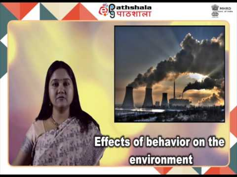 Environmental issues (PSY)
