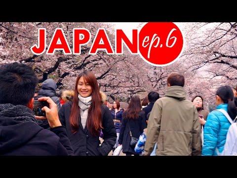 Sakura, Sushi & Street Food - UENO, AMEYOKO MARKET e AKIHABARA - Giappotour ep 6
