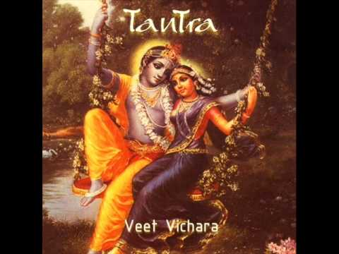 Veet Vichara - Moment To Moment