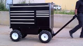 Electric Motorized Pit Cart