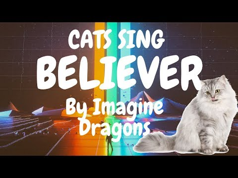 Cats Sing Believer by Imagine Dragons | Cats Singing Song