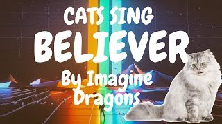 Cats Sing Believer by Imagine Dragons   Cats Singing Song