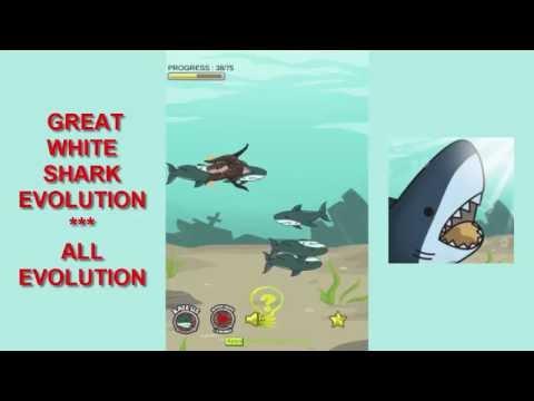 Great White Shark Evolution - All Evolutions