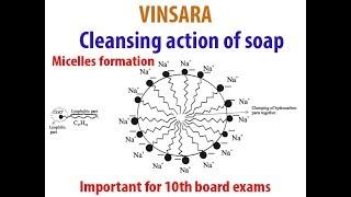 10 ch-4, Thema: die reinigende Wirkung von Seife## Micell-Bildung##