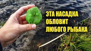 На крючок ставлю только эту насадку Клюёт вся рыба Рыбалка в сентябре октябре ноябре
