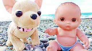 Куклы Пупсик Играет на Пляже Завели Собаку В Отпуске На Море #3 Игры Игрушки для девочек Зырики ТВ(Кукла Пупсик продолжает путешествие на море. Она играет на пляже после того, как искупалась. Вдруг к ним..., 2016-10-21T13:14:23.000Z)