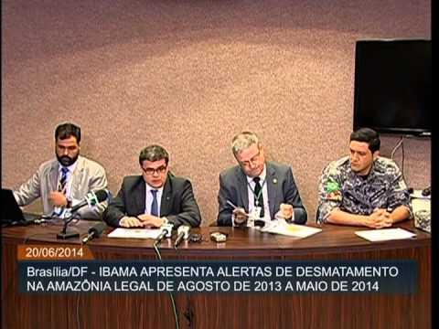 Desmatamento na Amazônia cai 24% de agosto de 2013 a maio deste ano