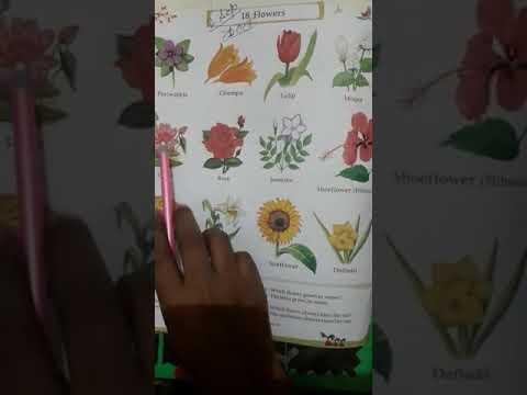 Class-U.K.G - B.K - Flowers name