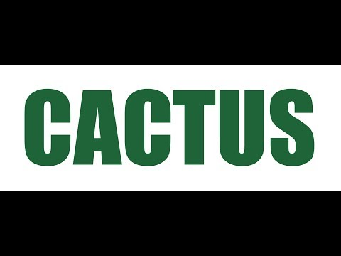 The Cactus Song by (DJ DiZzy & P-Swizzle)