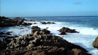 Monterey California Coast Tourism