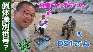 和歌山県、白崎海洋公園オートキャンプ場でソロキャンプを楽しんでいる...