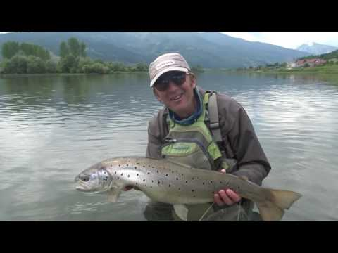 C&R  Fly  fishing Trout Blatnjaca endemic species of Plav lake by Tero.