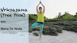 Tree Pose Variations - Vriksasana - Yoga Basics
