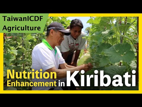 Nutrition Enhancement Project (Kiribati)