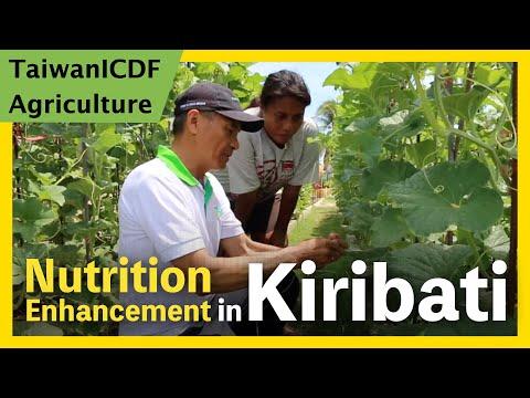 Nutrition Enhancement Project (Kiribati)