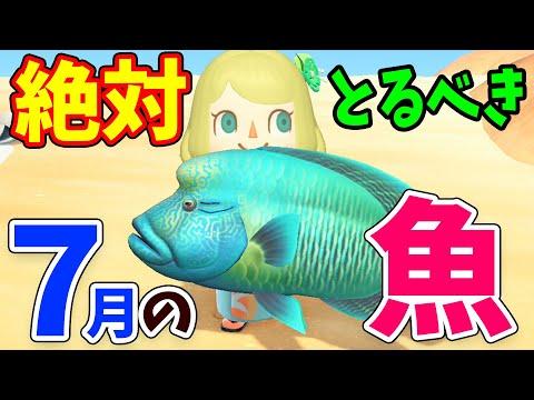 あつまれどうぶつの森 7月の魚