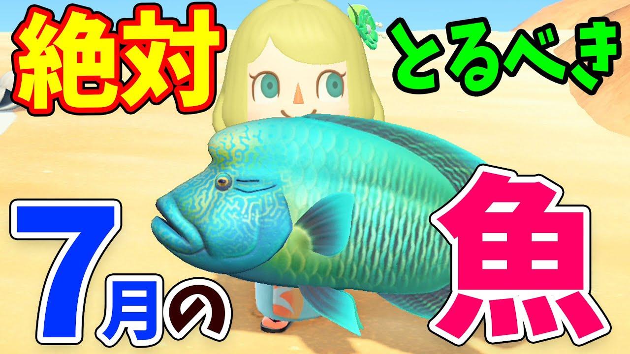 あつ森 魚 7月