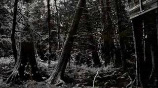 Wolves In The Throne Room - I Will Lay Down My Bones Among the Rocks and Roots