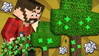 Where The First Tree Came From - Minecraft