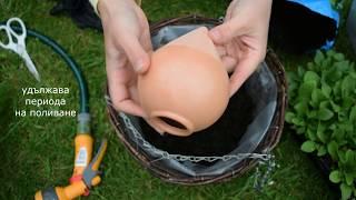 Как да удължите периода на поливане на висящите саксии