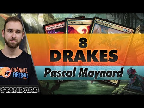 8 Drakes - Standard | Channel Pascal