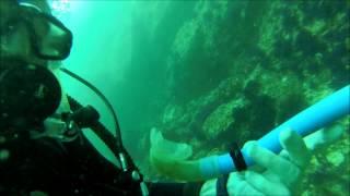 Diving Musandam Oman with Nomad Ocean Adventure June19-20, 2015