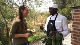Farm to Table in the Masai Mara