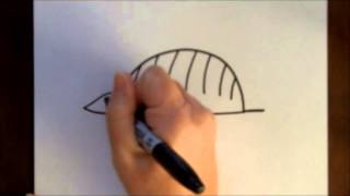 How to Draw an Armadillo Cartoon Simple Drawing Tutorial for Beginners