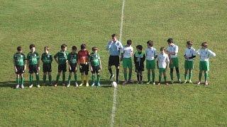 Lusitano 10  Sporting Viana 0