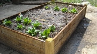 Attractive Raised Bed For A Patio.